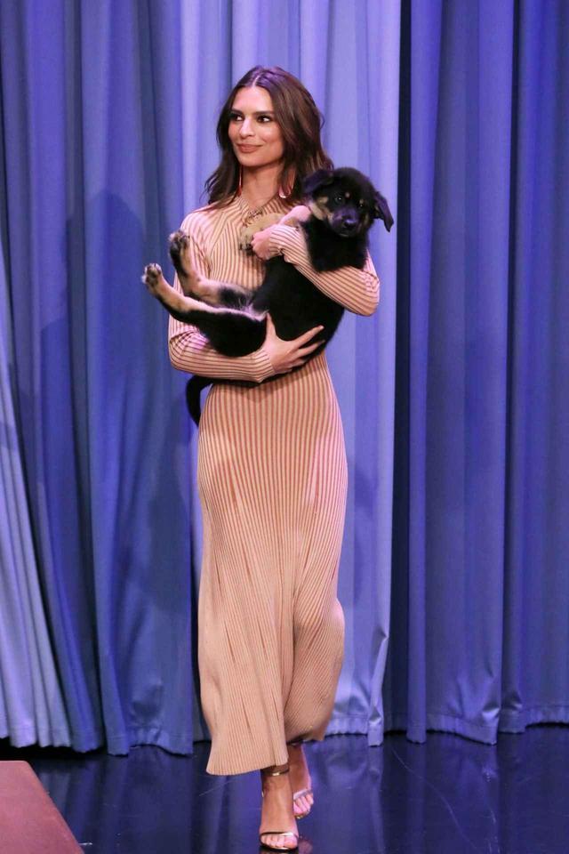 画像5: エミリー・ラタコウスキーが愛犬にメロメロ♡おしゃれなリードに注目
