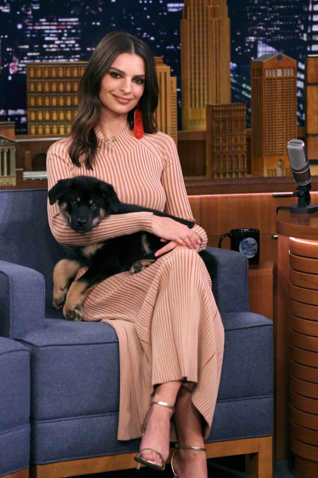 画像6: エミリー・ラタコウスキーが愛犬にメロメロ♡おしゃれなリードに注目