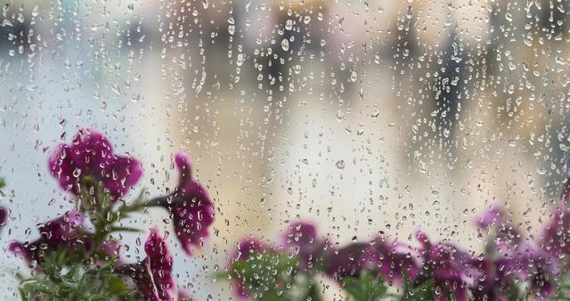 画像: メイクが崩れる梅雨に買い足すべき「意外なコスメ」とは?