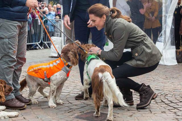 画像1: ウィリアム王子とキャサリン妃、「ヘンリー王子」に会って大喜びしたワケとは