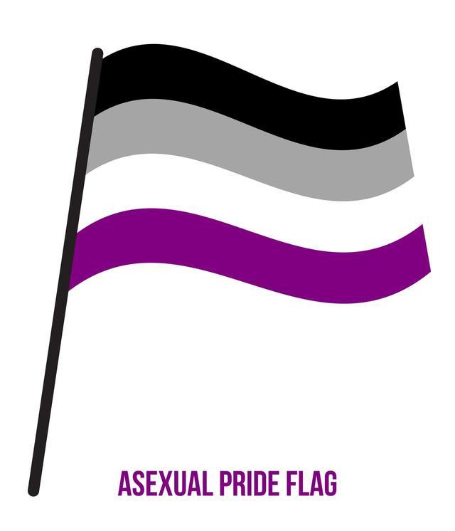 画像: 2010年にアメリカで作られたアセクシャルのフラッグ