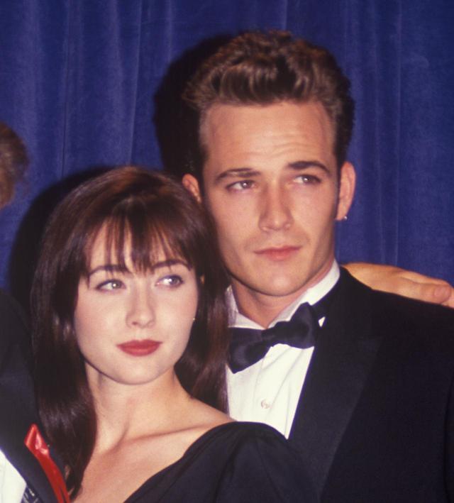 画像: 1993年当時、シャナンとルーク
