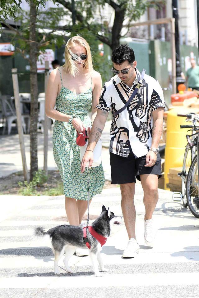 画像2: ソフィー&ジョーの愛犬が他界