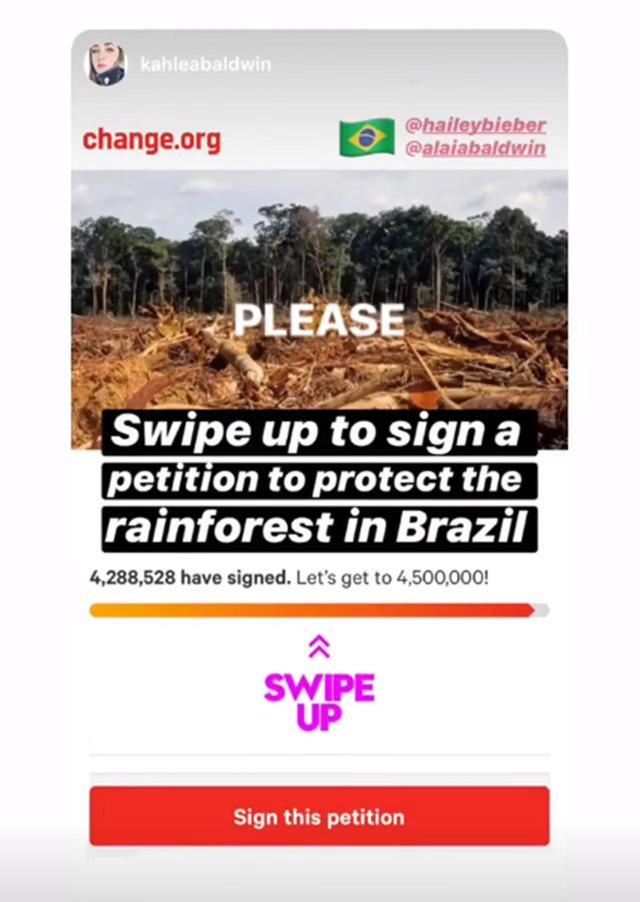"""画像: セレブもアマゾン熱帯雨林の""""現状""""を訴える"""