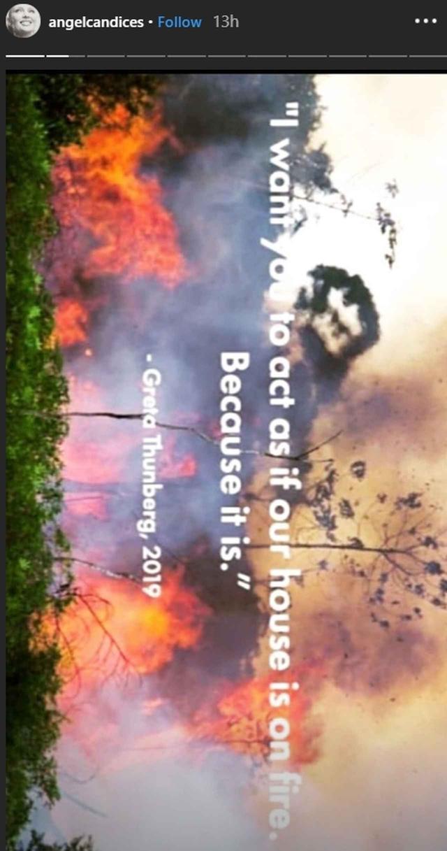 画像: 「あなたの家が火事にあっていると思って、これに対応してほしい。だって、それと同じことだから」という環境活動家グレタ・トゥーンベリの言葉を引用。