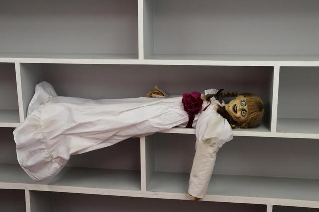 画像: アナベルちゃんが編集部で休憩中。