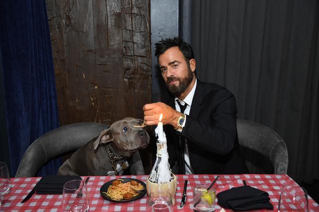 画像1: 愛犬とあの超ロマンチックなシーンを再現
