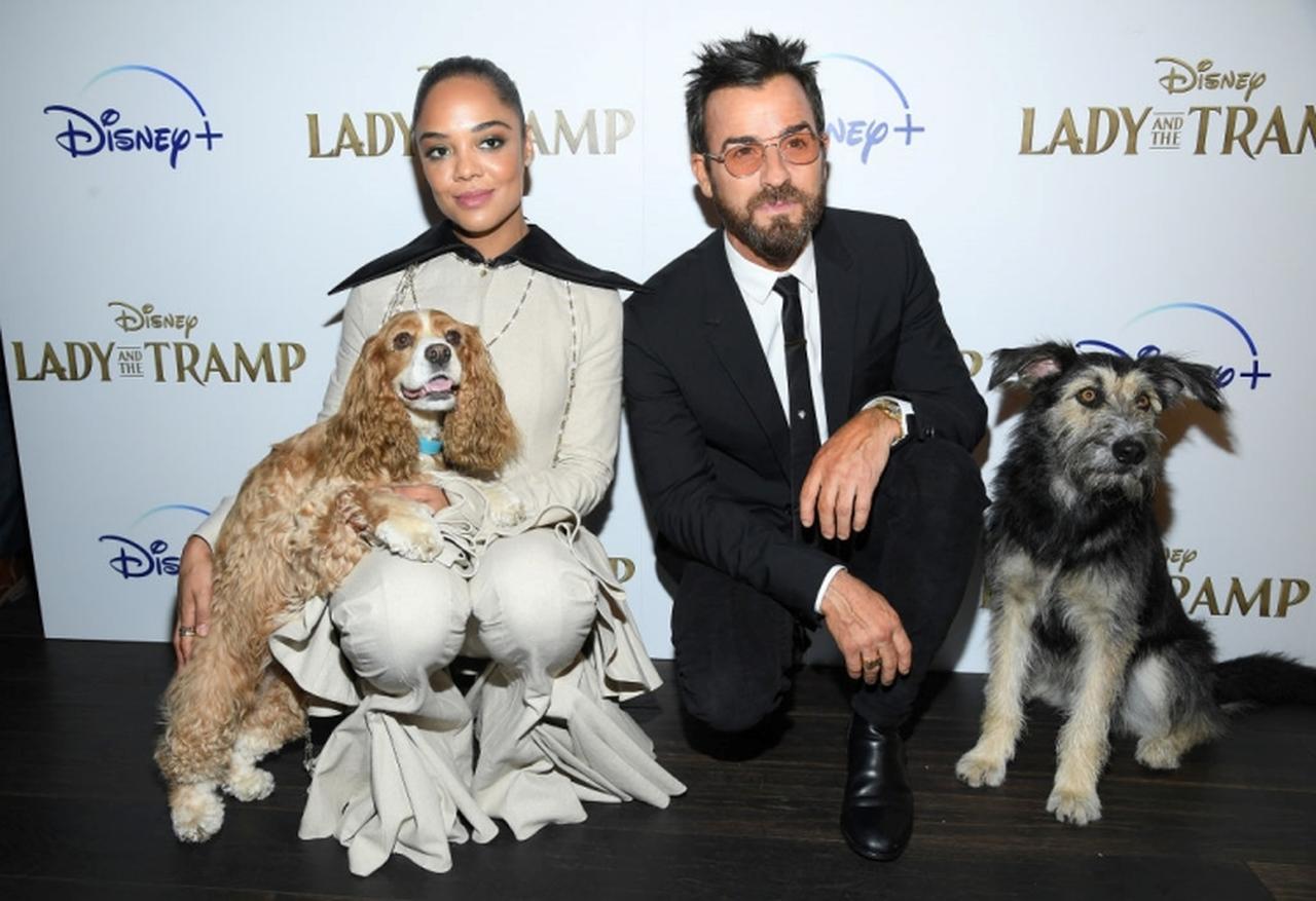 画像5: 愛犬とあの超ロマンチックなシーンを再現