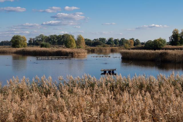 画像: イギリス、湖水地方