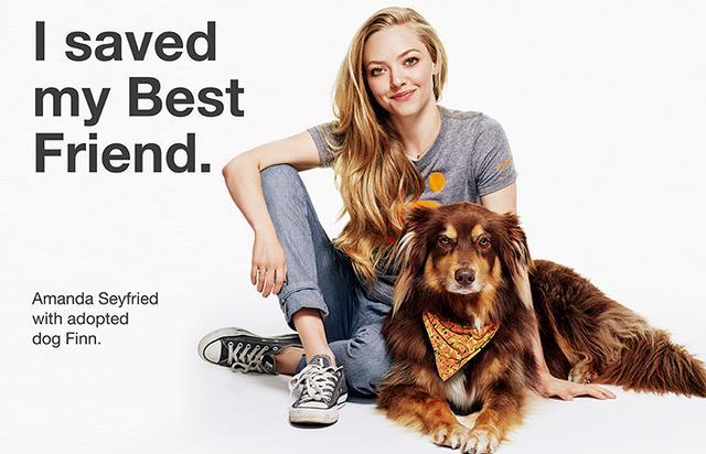 画像: 俳優のアマンダ・サイフリッドと保護犬のフィン。ペットの里親になることを推進する団体の「私は親友を救った」という広告に揃って出演したときの一枚。