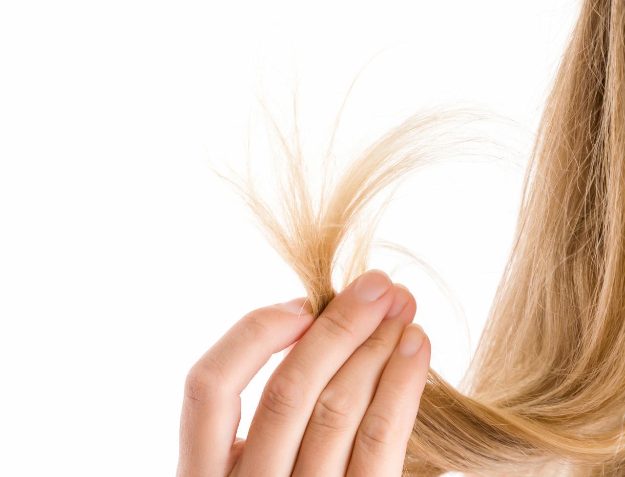 画像: 美髪のためには毛先のカットが大切