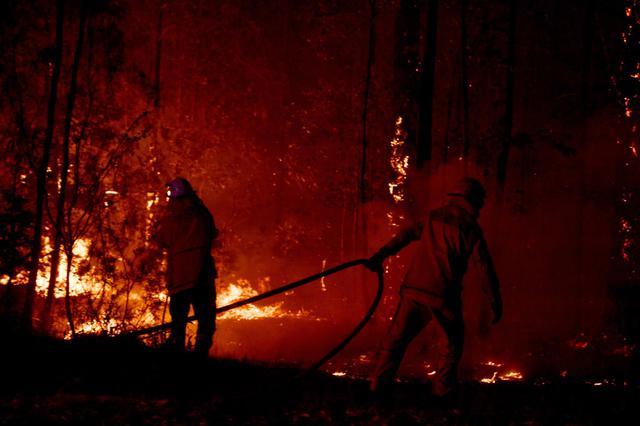 画像: オーストラリアで森林火災が深刻化
