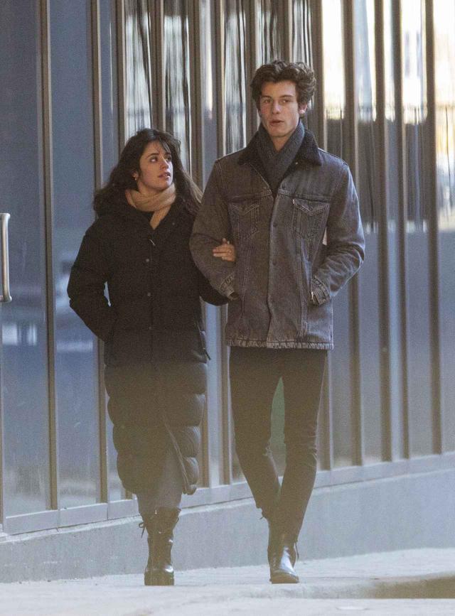 画像: トロント市内を腕を組んでデートするカミラとショーン。