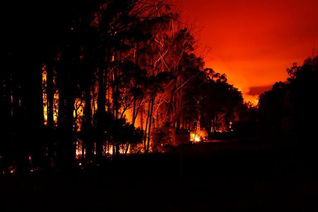 画像: 森林が燃え、空が赤く染まる(イースト・ギップスランドにて2020年1月2日に撮影)