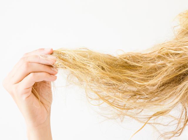 画像: 「枝毛」「切れ毛」になる原因はたくさんある