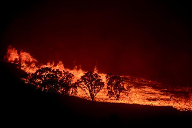 画像: オーストラリアの首都キャンベラの森林火災の様子。(2020年2月1日撮影)