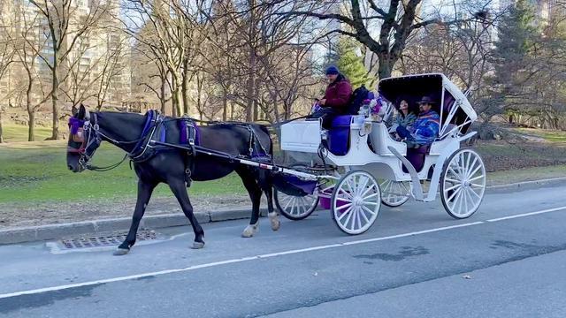 画像: Nicolas Cage Takes New Girlfriend Riko Shibata For A Horse Carriage Ride In Central Park youtu.be