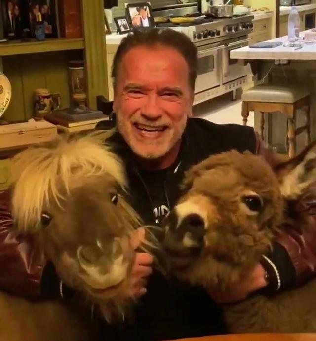 画像: Photo:©︎Arnold Schwarzenegger/Twitter