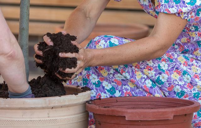画像3: キャサリン妃が子どもホスピスの庭づくりを手伝う