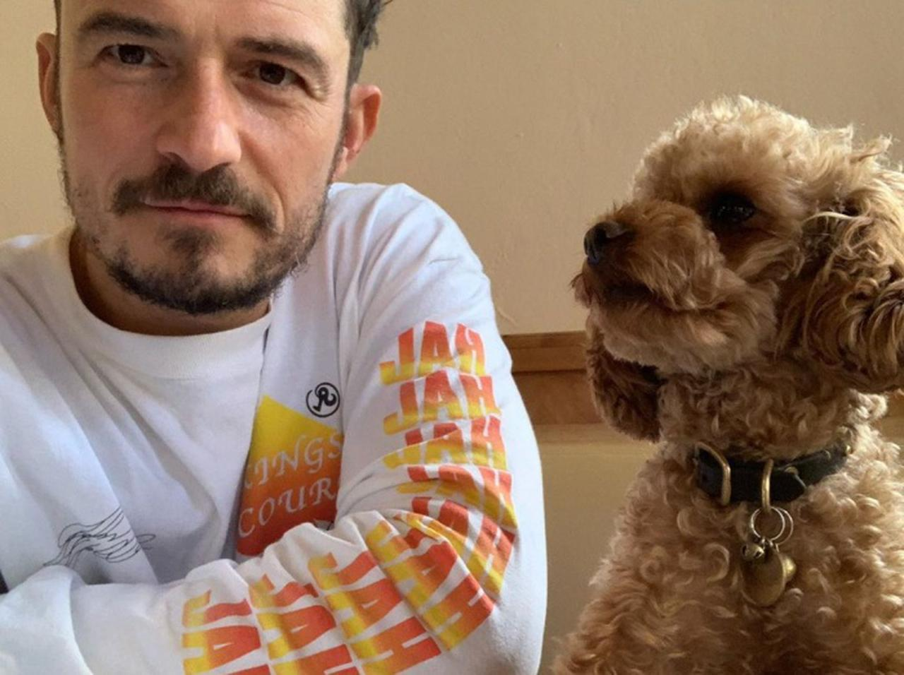 画像: オーランド・ブルーム、行方不明だった愛犬が天国へ…死を悼んでタトゥーを入れる - フロントロウ -海外セレブ情報を発信