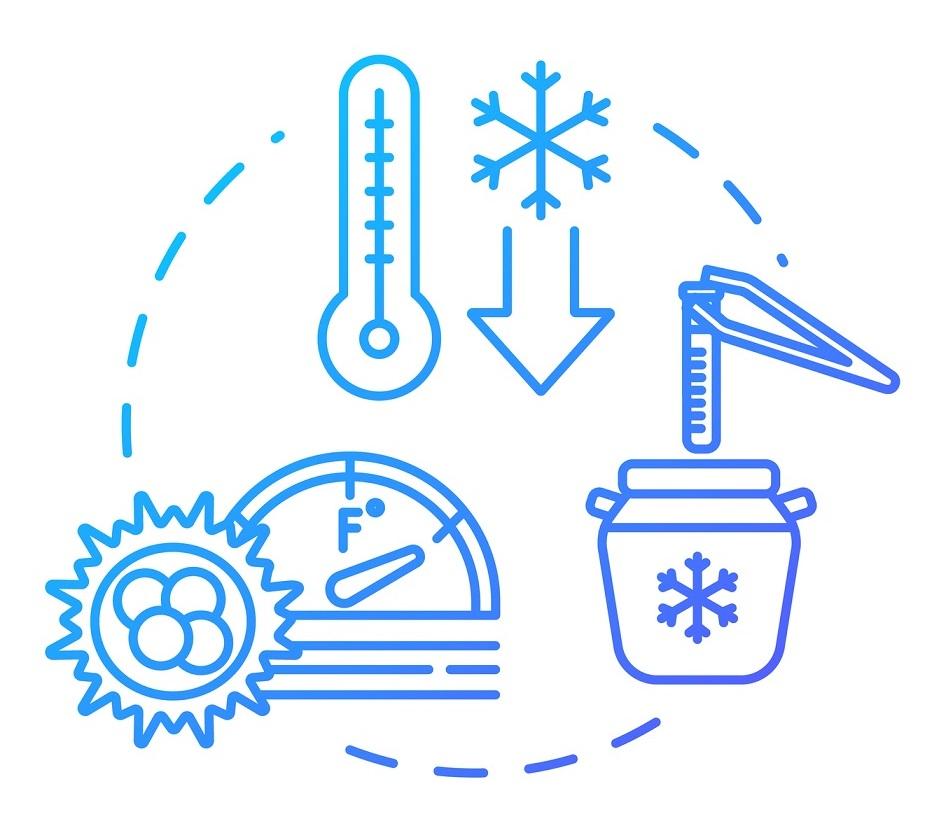 画像1: 人生の選択肢を増やすための卵子凍結「ソーシャル・エッグ・フリージング」