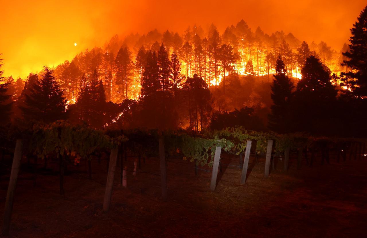 画像: ワイン産地として有名なナパバレーに迫る火災。(カリフォルニア州のナパ郡セント・ヘレナで9月27日に撮影)