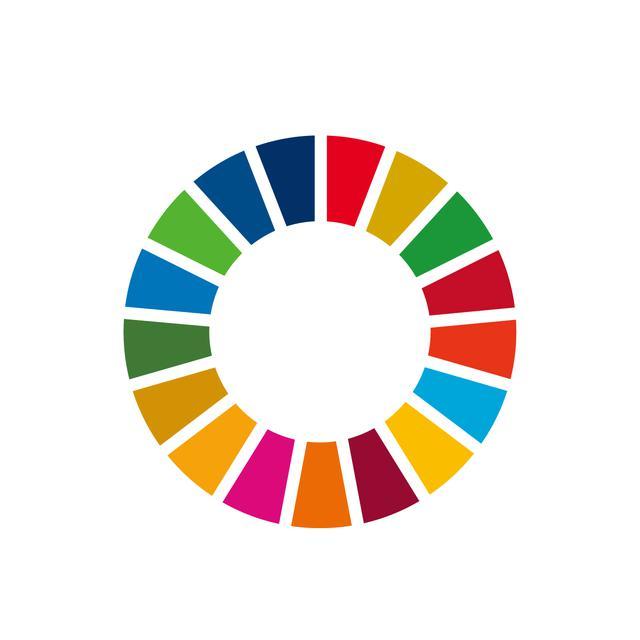 画像: SDGsのポイント4<17の目標> 一番重要なのはどれ?17の目標は愛憎ドラマの相関図のように絡み合っている