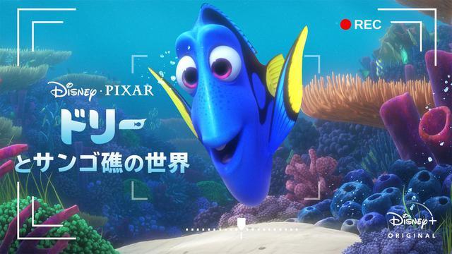 画像: © 2021 Disney/Pixar Dory's Reef Cam