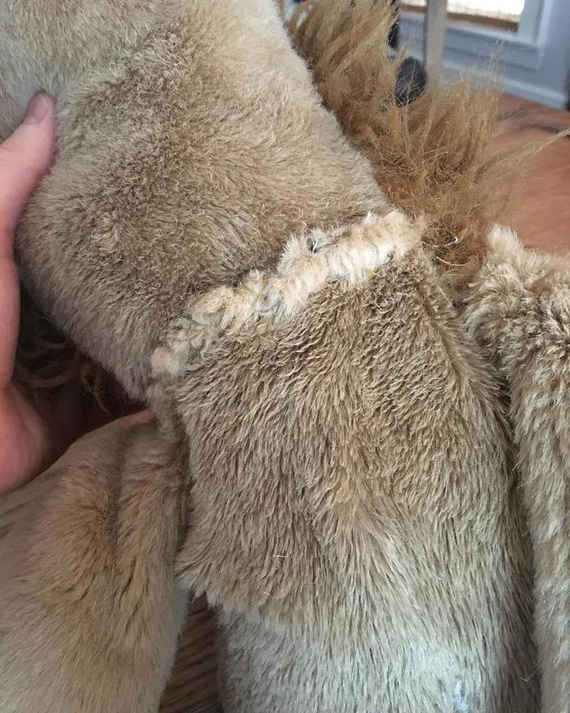 画像2: 愛犬ドジャーとぬいぐるみの手術を報告