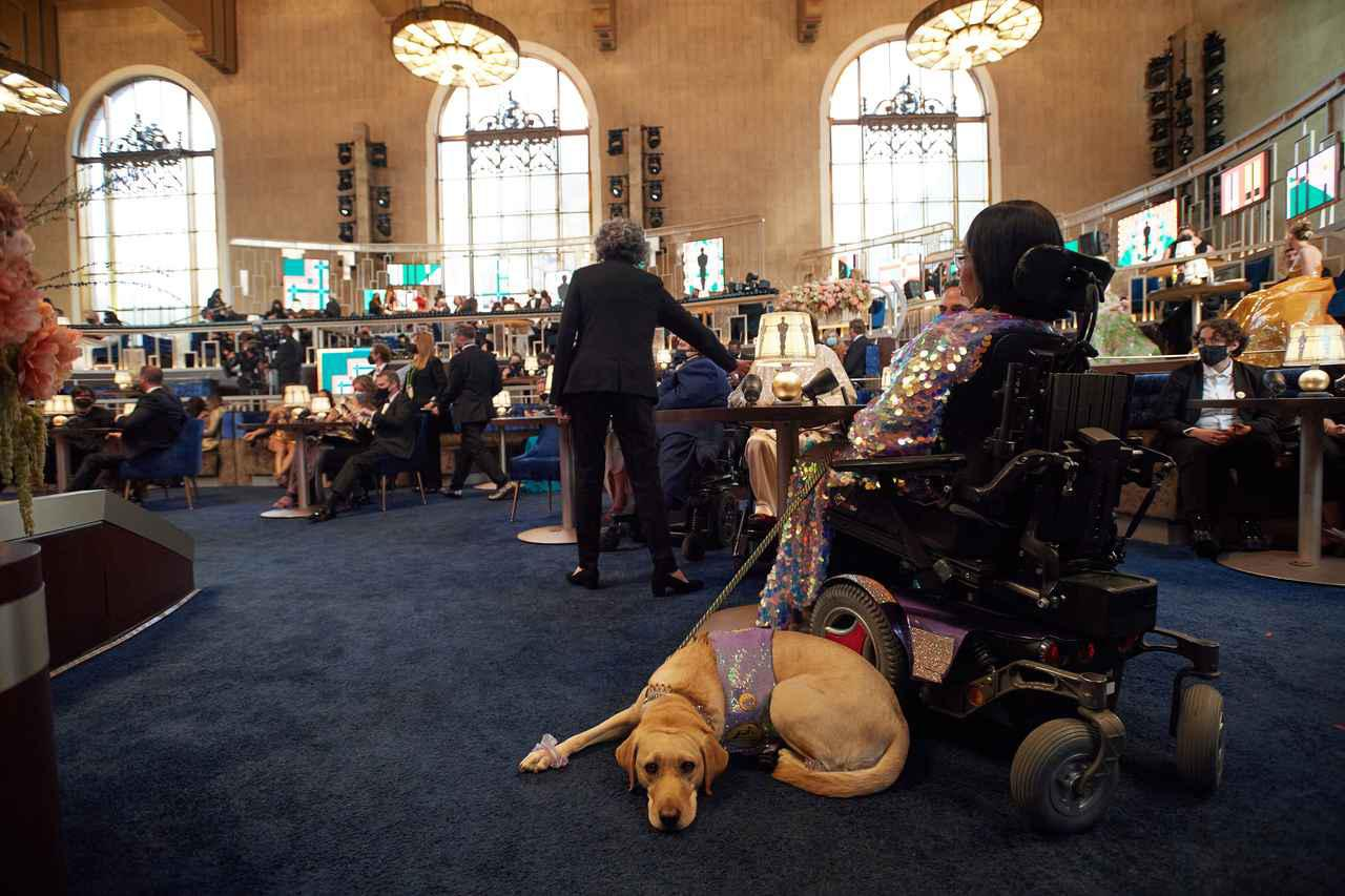 画像: 会場でくつろぐ介助犬