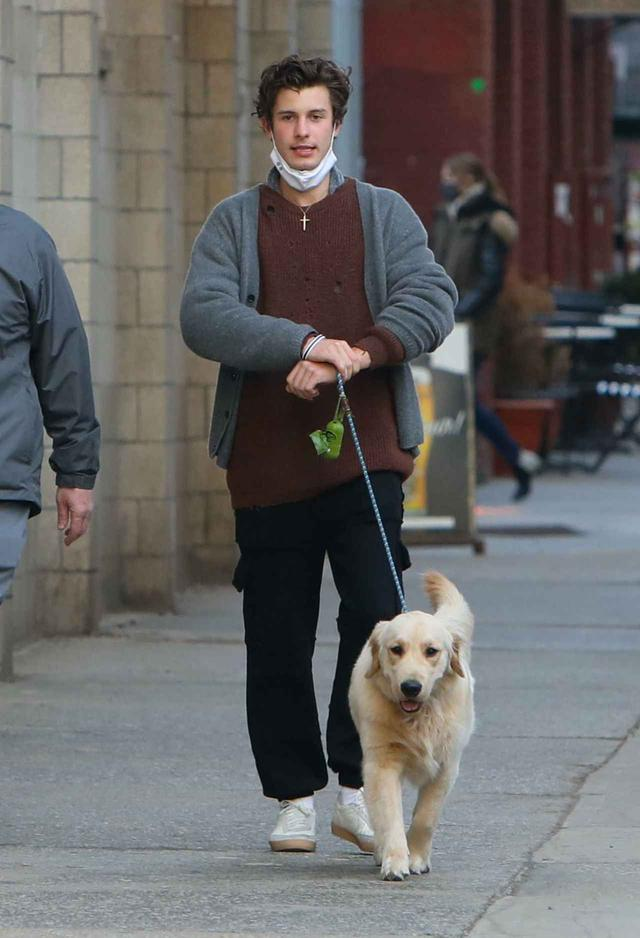 画像1: ショーン・メンデスが愛犬の散歩中に恋人のそっくりさんに遭遇