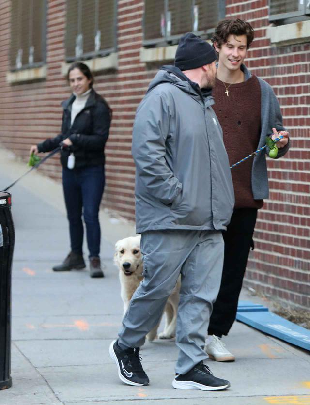 画像4: ショーン・メンデスが愛犬の散歩中に恋人のそっくりさんに遭遇