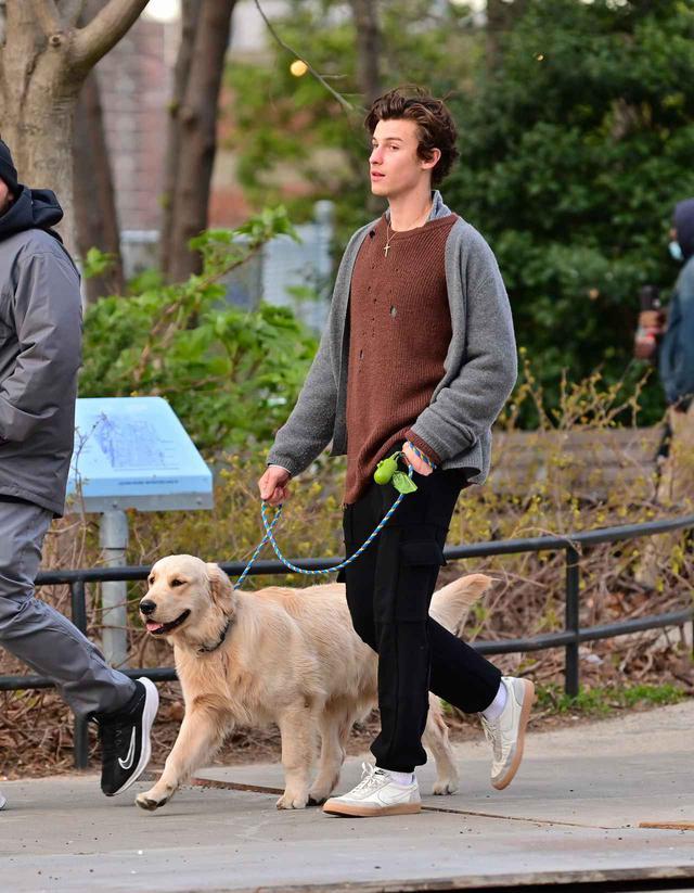画像2: ショーン・メンデスが愛犬の散歩中に恋人のそっくりさんに遭遇