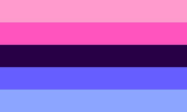 画像: オムニセクシャルのフラッグ(旗)