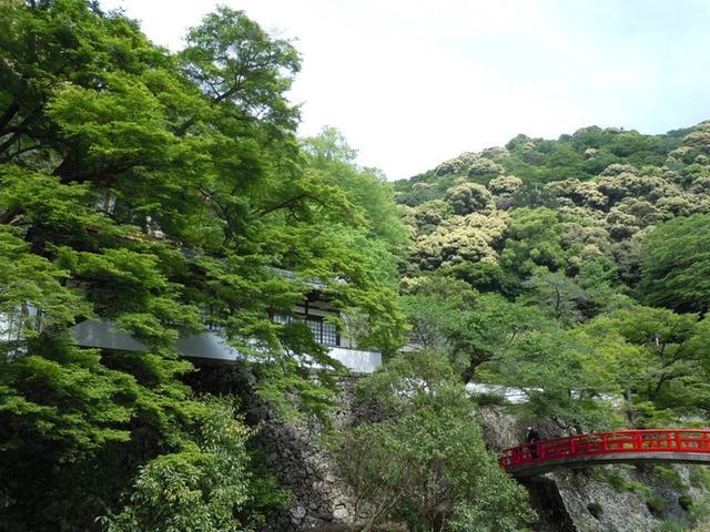 画像: 箕面公園 公式サイト