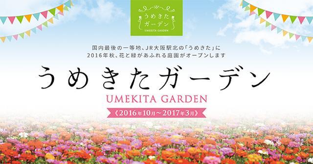 画像: うめきたガーデン - 大阪駅北《花と緑の庭園》