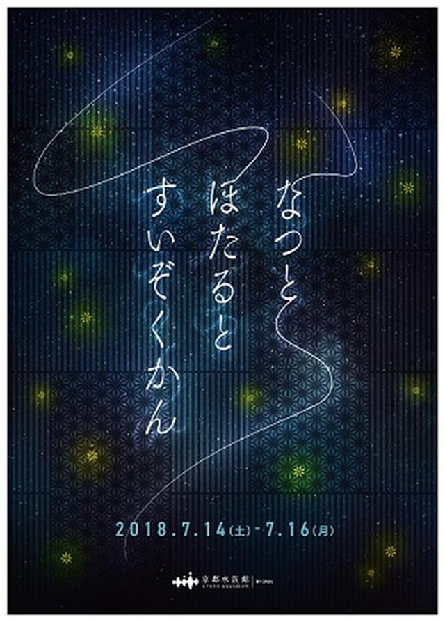 画像: 3日間限定「なつとほたるとすいぞくかん」を開催 初夏の風物詩ホタルが放つ光を間近で観察7/14~7/16 | 京都水族館
