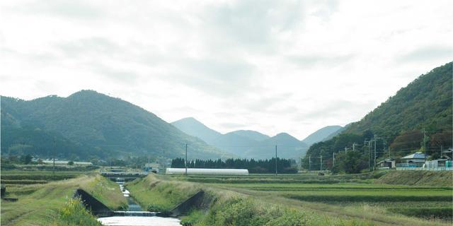 画像: 京都丹波ワイン公式サイト