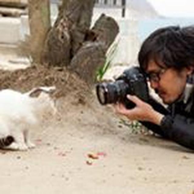 画像: 猫写真家 沖 昌之 (Masayuki Oki)さん(@okirakuoki) • Instagram写真と動画