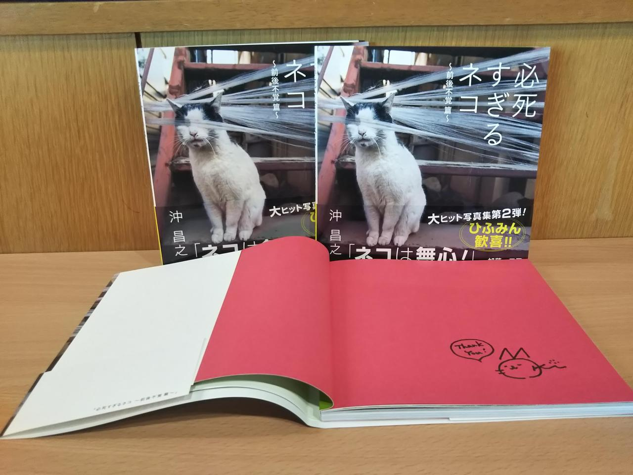 画像: 渾身の第2弾!「~必死すぎるネコ 前後不覚篇~」発売中!