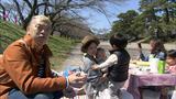 画像3: 東海道の宿場に訪れる春 静岡・藤枝市の旅