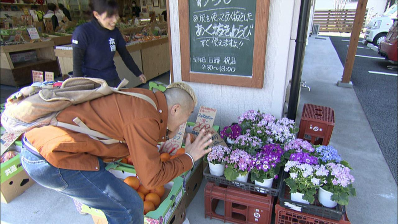 画像4: 東海道の宿場に訪れる春 静岡・藤枝市の旅