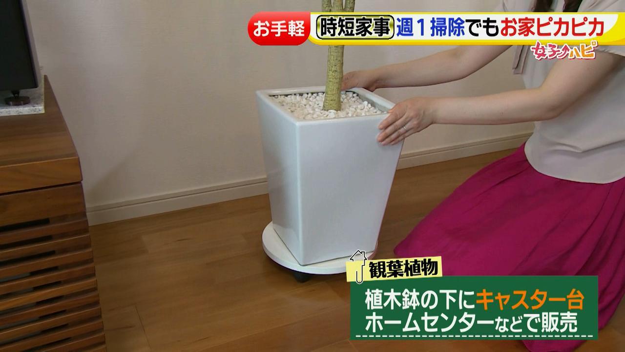 画像32: 予防掃除など家事の時短テクニックが満載!