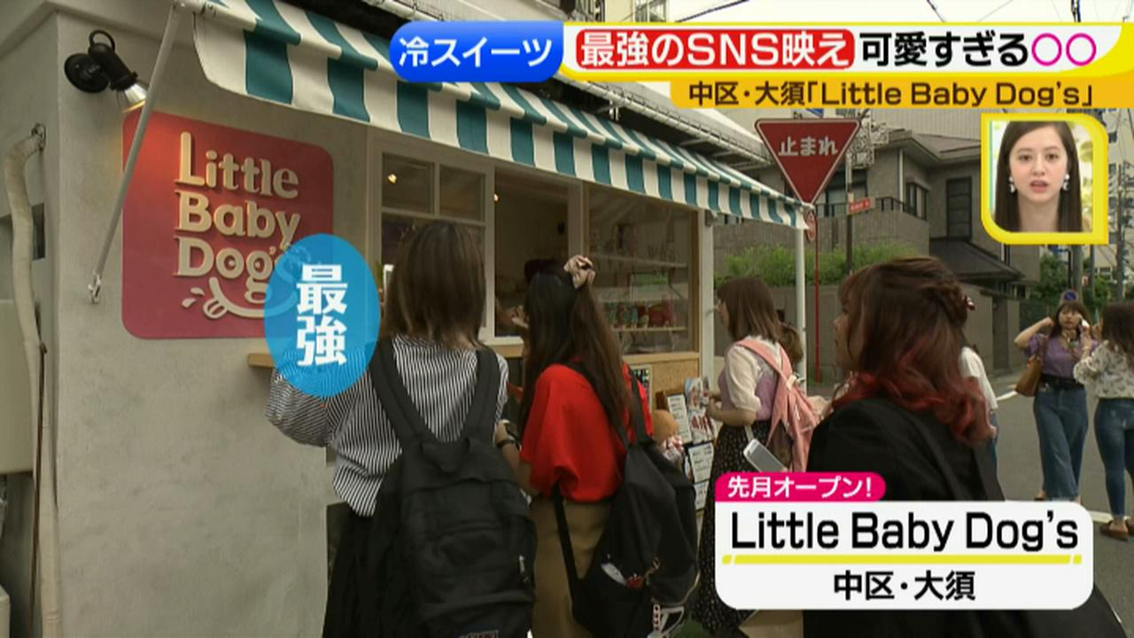 画像1: Little Baby Dog's ひんやりスイーツ