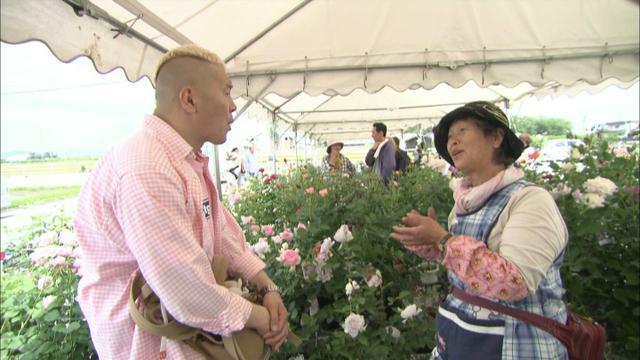 画像9: 薔薇の香りに包まれる町 岐阜・揖斐大野の旅