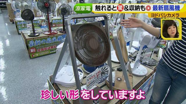 画像15: 普通触りませんが、触ってもいい扇風機 など最新家電