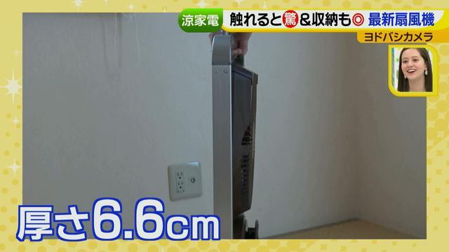 画像20: 普通触りませんが、触ってもいい扇風機 など最新家電