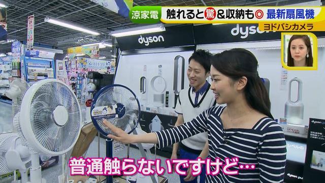 画像11: 普通触りませんが、触ってもいい扇風機 など最新家電