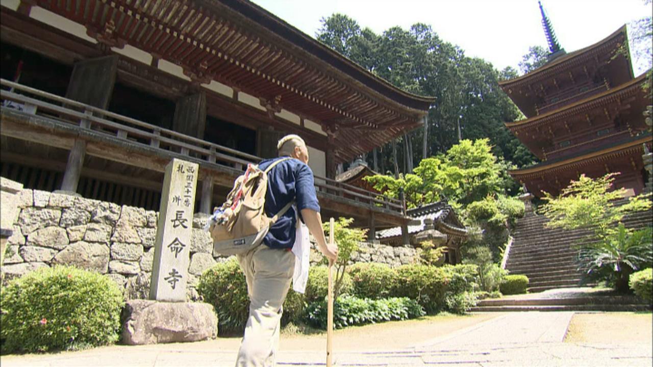画像2: 癒しの風景 湖の孤島 滋賀・近江八幡の旅