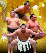 画像: 大相撲秋巡業のチケット発売!一宮場所&高山場所